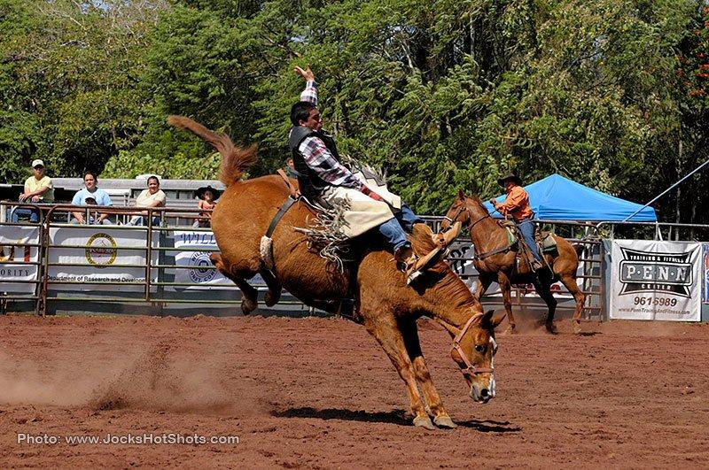 Panaewa Rodeo Stampede Big Island Rodeo Event