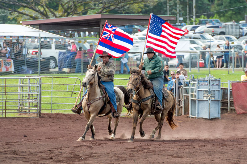 Panaewa Rodeo Stampede